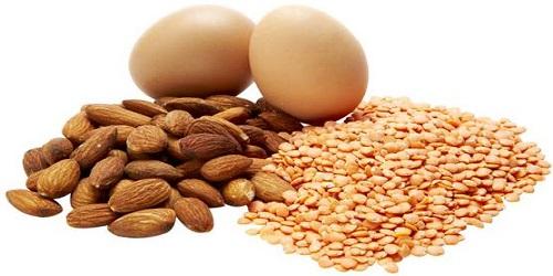 protien-rich-foods
